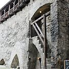 The wall of Tallinn by Natasha O'Connor