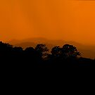 sunset's veil, ambience of rain... by Allan  Erickson
