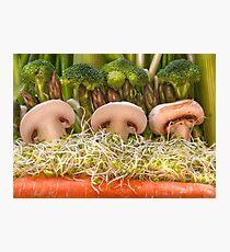 Fun Vegetable Landscape no.4 Photographic Print