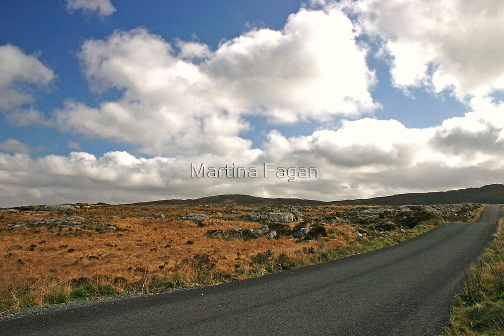 Road to Glenveagh national park #2 by Martina Fagan