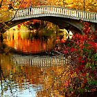 autumn colors by supergold