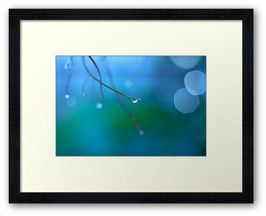 Untitled in blue by Mel Brackstone