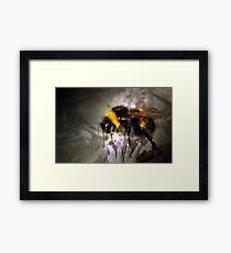 Just Bumble Framed Print