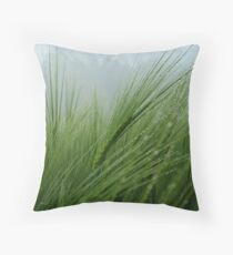 423 Throw Pillow