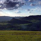 Hen Cloud by Paul  Green