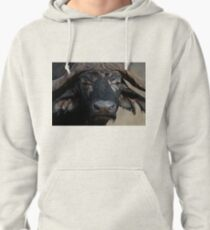 African Buffalo Pullover Hoodie