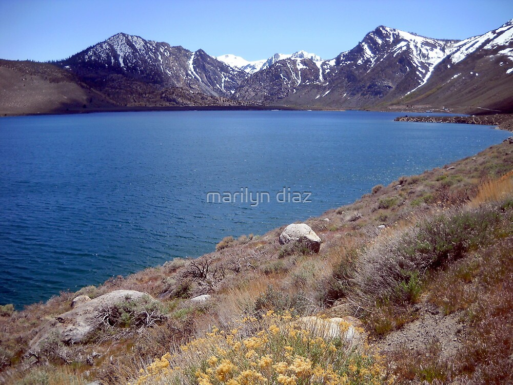 Grant Lake In The Spring by marilyn diaz