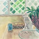 The cat is on the table by acquart