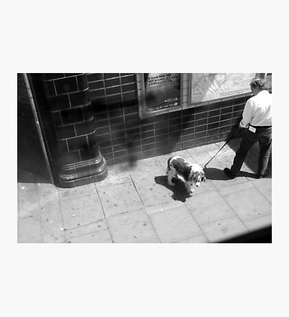 LONDON: VIEWS FROM THE TOP DECK PT 4 'PUPPY POWER' Photographic Print