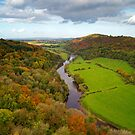 Autumn View from Symonds Yat Rock, England by Giles Clare
