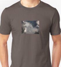 Through the Storm Dragon T-Shirt