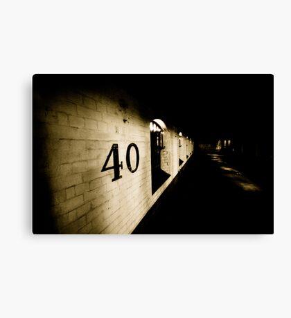 40 Canvas Print