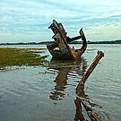 FD Clarin Bow by John Hare