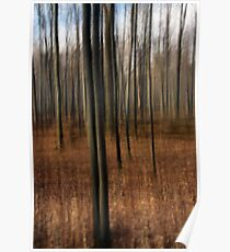 Two Among Many - Lou Campbell Nature Preserve Poster