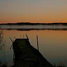 Apricot dawn by LadyFi