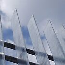 Fence in the sky by Catherine Davis