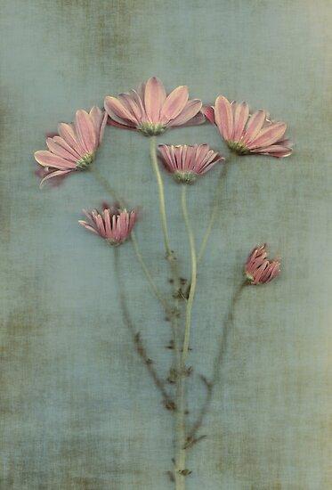 Pastel by Anne Staub