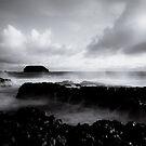Storm by Caroline Gorka