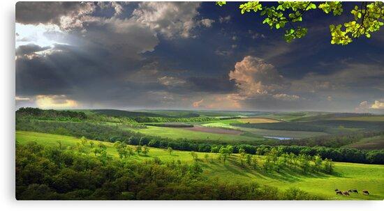 Calm Afternoon by Igor Zenin