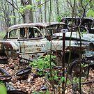 October Old Motor Car by Thomas Murphy