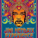 Are You Experienced? by TheRocker