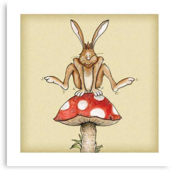 Fungi Jumping by Joanna Greenlees