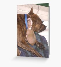 ~ Puppy love ~ Greeting Card