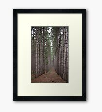 Towering Beauty Framed Print