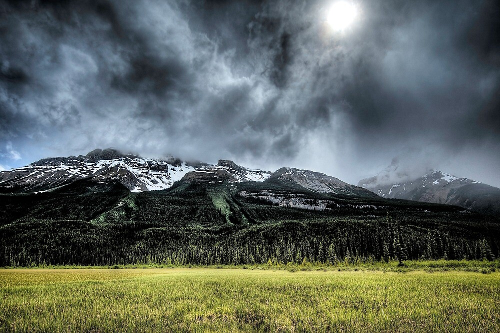 Summer Snowstorm by Mike Traynor Photography