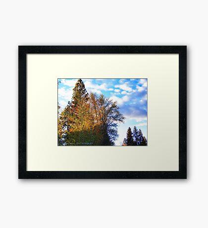 Sun's Last Rays Framed Print