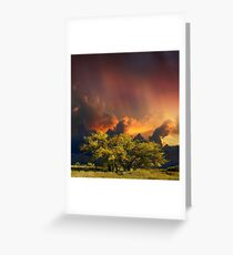 4007 Greeting Card