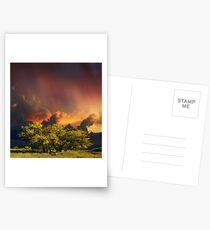 4007 Postcards