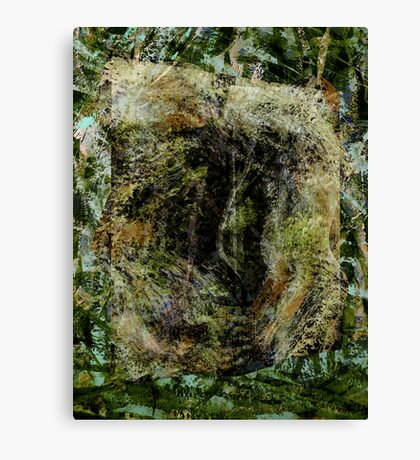 forest..... entrance-in, no exit-out Canvas Print