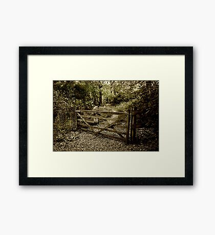 The Woodland Gate Framed Print