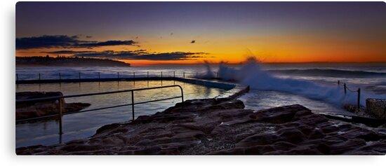 Morning Break by Mark  Lucey