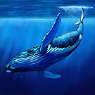Blue Whale Dive by a-roderick