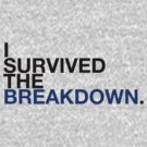 i survived the breakdown (II) by Alessandro Arcidiacono