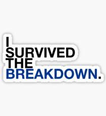 i survived the breakdown (II) Sticker