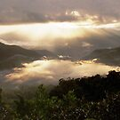 Sunrise over the Cloud Forest, Northern Peru by k8em