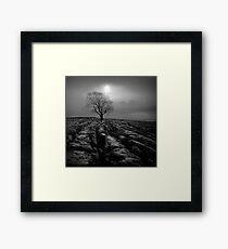 Malham Tree 01 - Yorkshire Dales, UK Framed Print