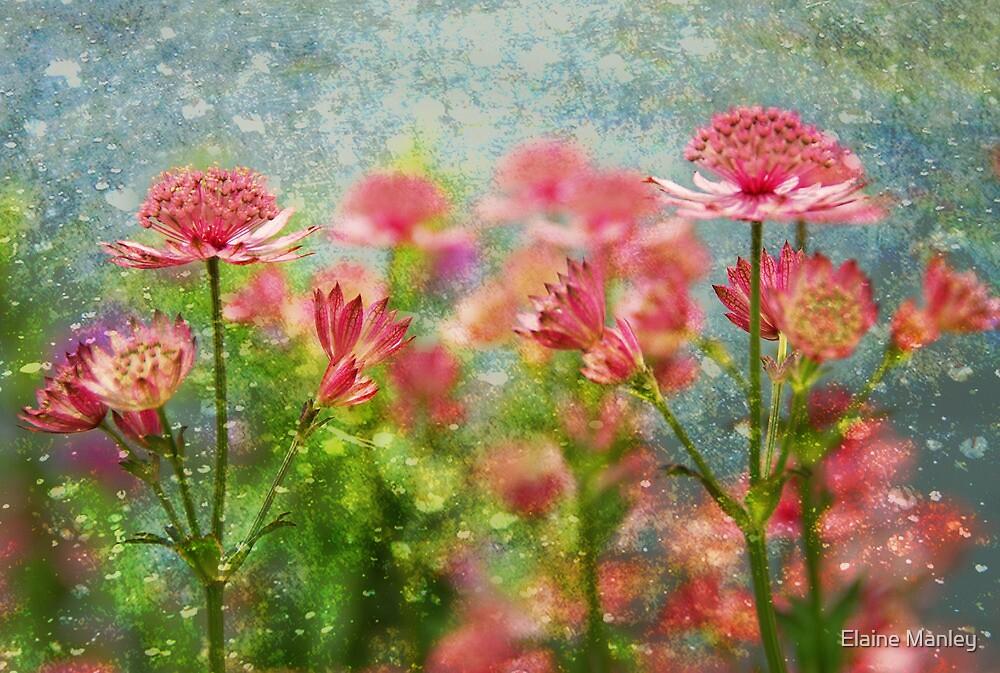 Rainy Day  by Elaine  Manley