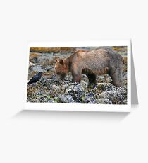 Grizzly Cub and Friend Greeting Card