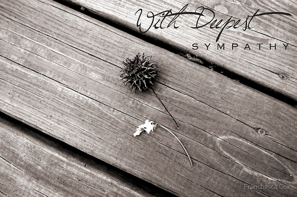 With Deepest Sympathy by Franchesca Cox