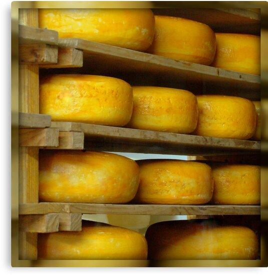 Got Cheese? by Susan McKenzie Bergstrom