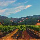 California Vineyard by artstoreroom