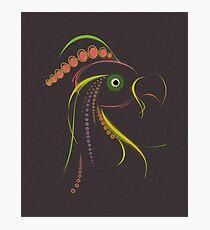 Lines Color Bird Dark Photographic Print