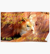 Baby Wildlife Of The World Banner Poster
