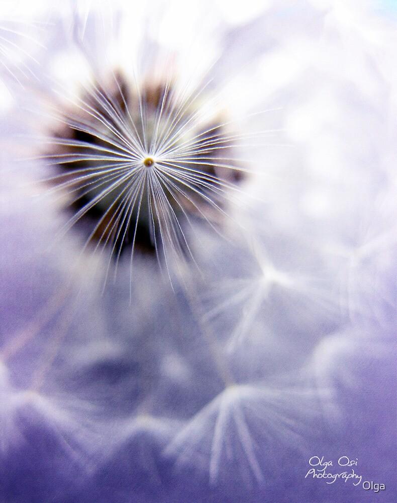 Purple star by Olga