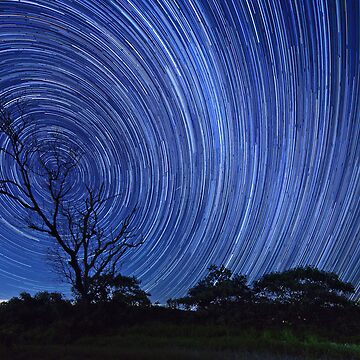 Startrails on a Moonless night by dadegroot