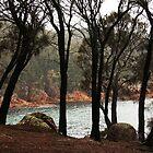 Freycinet National Park, Tasmania by paulinea